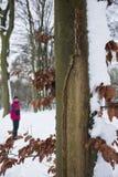 Detalle del árbol y hojas cubiertas con nieve en invierno y una falta de definición Imágenes de archivo libres de regalías