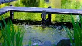 Detalle del agua de los flujos en fondo del lago metrajes
