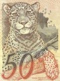 Detalle del billete de banco verdadero 50 del Brasil Imágenes de archivo libres de regalías