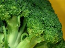 Detalle del bróculi fotografía de archivo libre de regalías