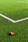 Detalle del campo de fútbol, hierba y líneas de la esquina blancas Imagen de archivo