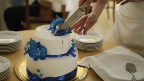 Detalle del corte del pastel de bodas por el pastel de bodas de los recienes casados almacen de video
