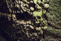Detalle del cráneo en París Cataombs Foto de archivo libre de regalías