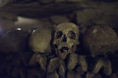 Detalle del cráneo en París Cataombs Fotos de archivo libres de regalías