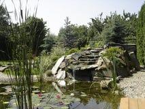 Detalle del jardín fotos de archivo