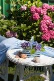 Detalle del jardín del Hydrangea imagenes de archivo