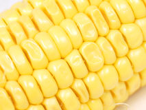 Detalle del maíz dulce Fotos de archivo