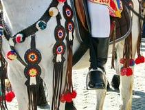 Detalle del ornamento en el caballo Fotografía de archivo