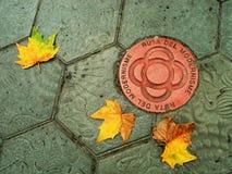 Detalle del pavimento de Gaudi Imagenes de archivo