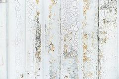 Detalle del primer de la pintura del grunge en la pared oxidada del metal blanco Fotografía de archivo libre de regalías