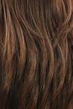 Textura del pelo de Brown foto de archivo libre de regalías