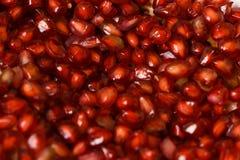 Detalle del primer de las semillas de las frutas de la granada imagen de archivo libre de regalías