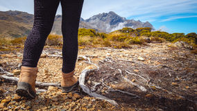 Detalle del senderismo de la mujer en la pista de la montaña, Nueva Zelanda Foto de archivo libre de regalías