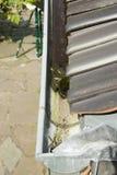 Detalle del tubo atascado debido a la obstrucción causada por las bolas del musgo Fotos de archivo