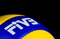 Detalle del voleibol de FIVB fotografía de archivo
