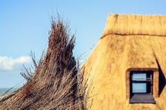 Detalle el tiro de la hierba de lámina usado para construir casas de tejado cubierto con paja imagen de archivo libre de regalías