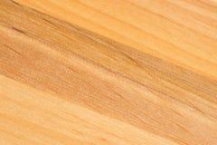 Detalle en el árbol Modelo natural ligero de la madera Fondo de madera del grano Fotografía de archivo libre de regalías