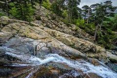 Detalle en el Haute-Corse, Corcica de la cascada de Francia Imagen de archivo libre de regalías