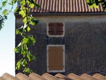 Detalle en Istria Foto de archivo libre de regalías