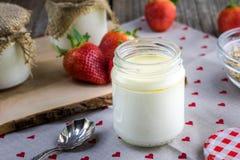 Detalle en un yogur blanco hecho en casa que madura en el tarro de cristal Foto de archivo
