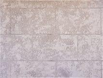 Detalle enyesado de la textura del fondo del muro de cemento Imágenes de archivo libres de regalías
