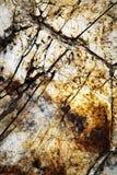 Detalle la piedra de la superficie del surco Fotografía de archivo libre de regalías
