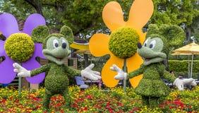 Detalle la vista de Disneys Micky y mini chara de la flor foto de archivo libre de regalías