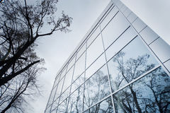 Detalle moderno de la fachada con la reflexión del árbol Fotografía de archivo libre de regalías