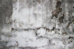 Detalle mohoso resistido de la pared colonial vieja en el FE de Asia sudoriental Fotografía de archivo