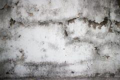 Detalle mohoso resistido de la pared colonial vieja en los wi de Asia sudoriental Foto de archivo
