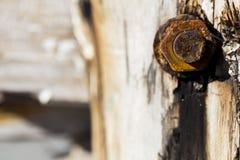 Detalle oxidado de la tuerca Fotos de archivo