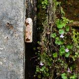 Detalle urbano abandonado Foto de archivo libre de regalías