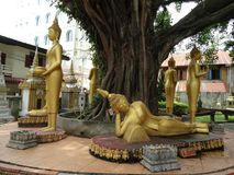Detalles de bellas arte en el templo budista Foto de archivo libre de regalías