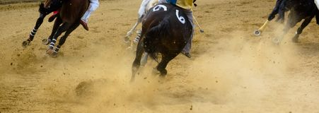Detalles de la carrera de caballos de Asti de los di de Palio de las piernas galopantes de los caballos en hipódromo Imagenes de archivo