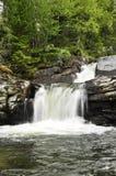 Detalles de la cascada hermosa Fotos de archivo