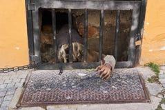 Detalles de la decoración de la calle Praga, República Checa imagen de archivo