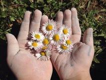 detalles de la naturaleza con las manos de los niños Imágenes de archivo libres de regalías