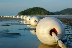 Detalles de la red de pesca Foto de archivo libre de regalías