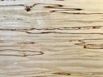 Detalles del grano de madera de abedul Imagen de archivo
