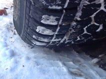 detalles del invierno Fotos de archivo