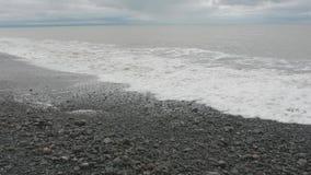 Detalles del paisaje marino Reserva de Gannet de los secuestradores del cabo Isla del norte En alguna parte en Nueva Zelandia metrajes