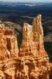 Detalles en Bryce Canyon Imagen de archivo libre de regalías