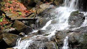 Detalles hermosos de la cascada metrajes