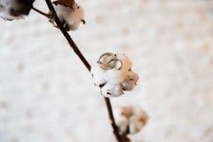 Detalles nupciales - los anillos de bodas se ponen en las flores y las ramitas mientras que novia que consigue lista antes de la  fotografía de archivo libre de regalías