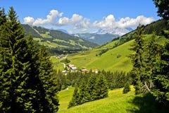 detalpina landskapet med betar och skogar i sommar royaltyfria foton