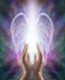 Detectando Angelic Energy imagens de stock
