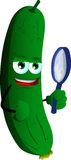 Detective cucumber or pickle Stock Photo