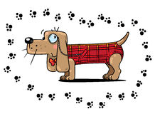 Detective dog, surrounded by footprint. Children illustration of funny clever detective dog in a plaid vest surrounded of footprint Stock Image