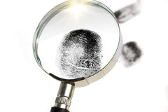 Detective magnifier Royalty Free Stock Photos