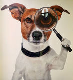 Detective with magnifying glass. Postcard Stock Photo
